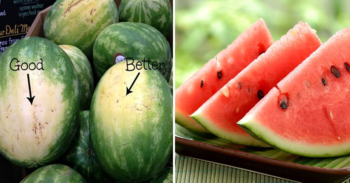 watermelon - Keep These Tips in Mind the Next Time You are Out to Pick Watermelons