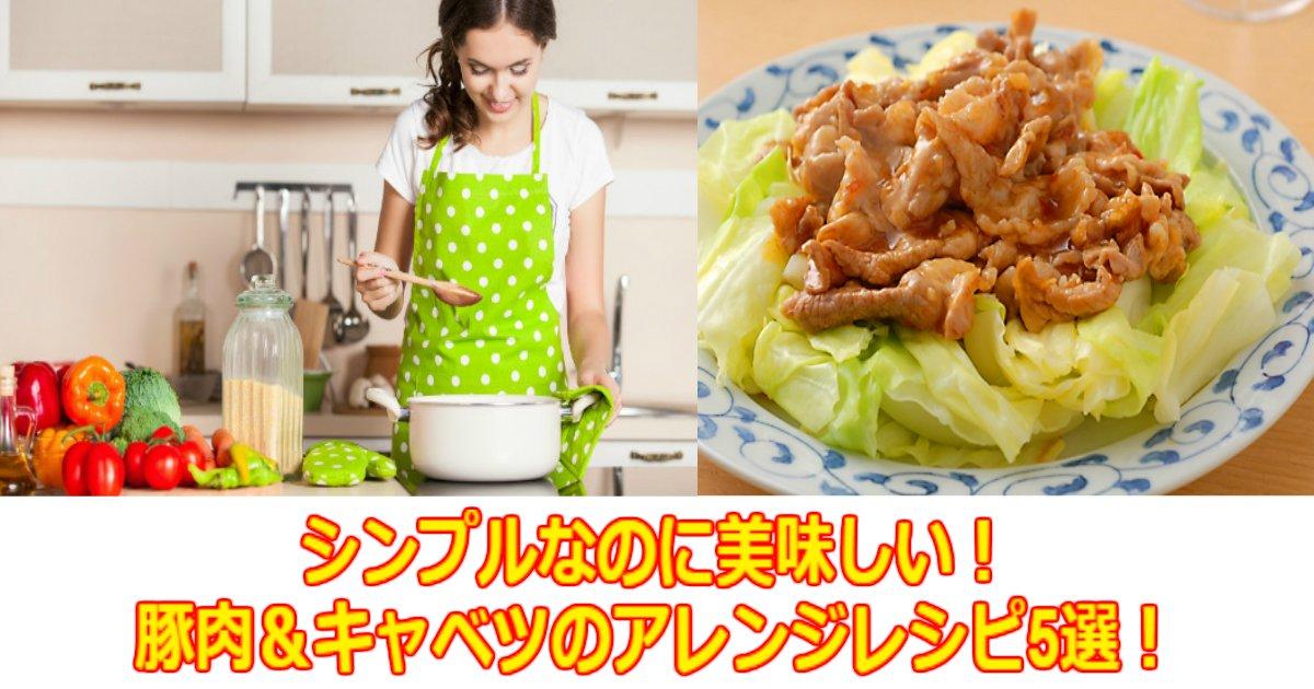 www.jpg?resize=1200,630 - シンプルなのに美味しい!豚肉&キャベツのアレンジレシピ5選!