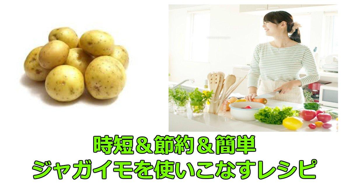 zya - じゃがいもの時短&節約&簡単、電子レンジで作れるレシピなど紹介!