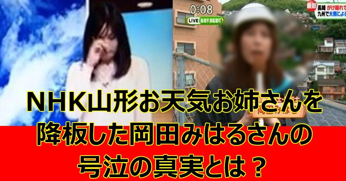 0501.png?resize=1200,630 - NHK山形お天気お姉さんを降板した岡田みはるさんの号泣の真実とは?