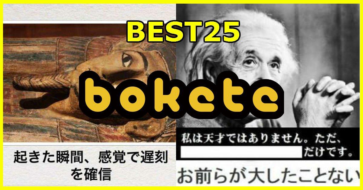 1 321.jpg?resize=300,169 - Hachi8編集部が選んだbokete作品ベスト25