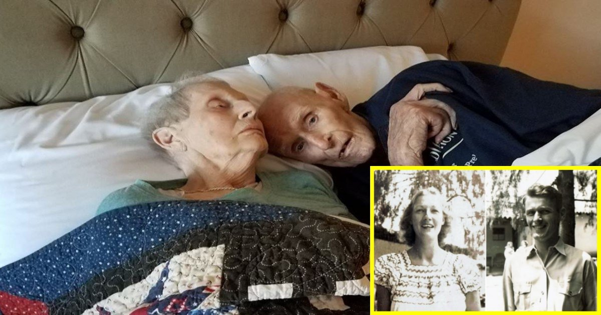 1 386.jpg?resize=412,232 - Couple Served In WWII Together, Married For Seven Decades, And Passed Away On The Same Day After Taking Their Last Nap Together