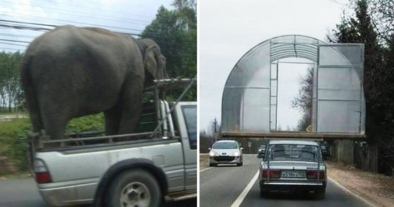 180530 201.jpg?resize=1200,630 - 原來大象是這樣載的嗎?16種你從沒想到的運貨方式!
