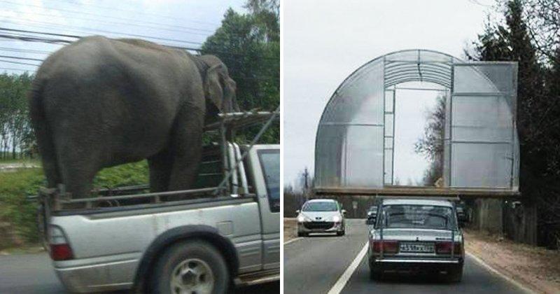 180530 201.jpg?resize=648,365 - 原來大象是這樣載的嗎?16種你從沒想到的運貨方式!