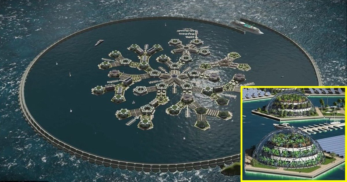 2 271.jpg?resize=412,232 - World's First Independent Floating Nation Is Set To Launch In Pacific Ocean In 2022