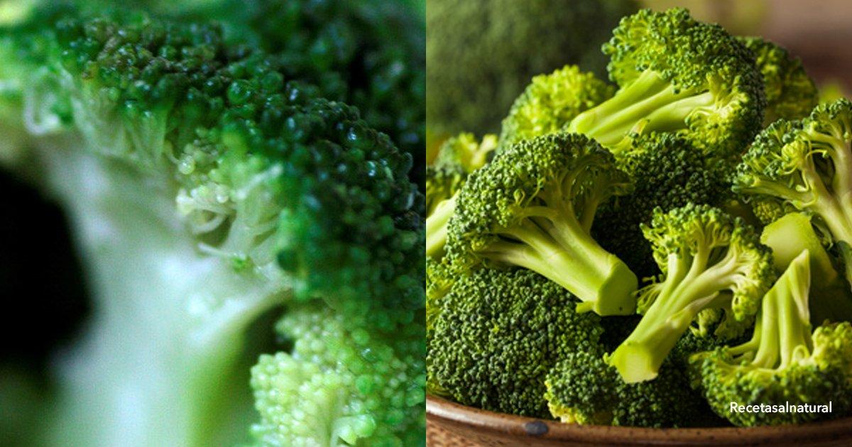 """2 cov 1.jpg?resize=300,169 - Científicos confirman que el brócoli es una verdura """"salvavidas"""""""