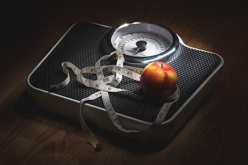 체중 감소, 중량, 영양, 규모, 체중 관리, 과체중, 저체중