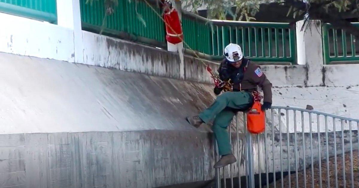 a 2.jpg?resize=1200,630 - [Vidéo] Des pompiers viennent en aide à un chat coincé dans un collecteur d'eau pluviales.