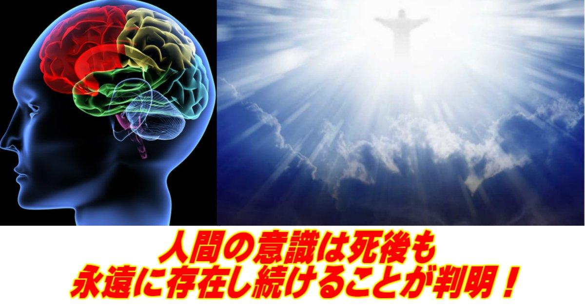 aa 18.jpg?resize=1200,630 - 【科学】人間の意識は死後も永遠に存在し続けることが判明!