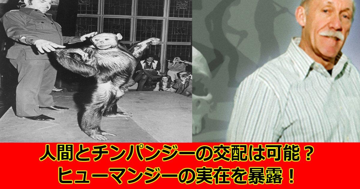 aaaaaa.jpg?resize=412,232 - 【衝撃実験】人間とチンパンジーの交配?!ヒューマンジーの実在を暴露した科学者!