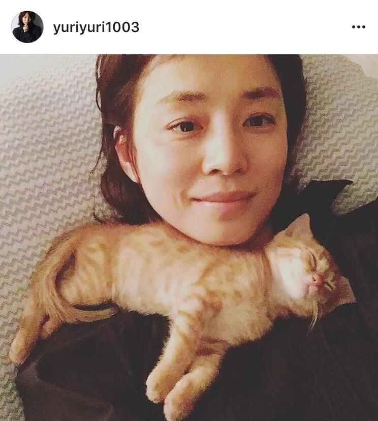 石田ゆり子 インスタ 猫에 대한 이미지 검색결과