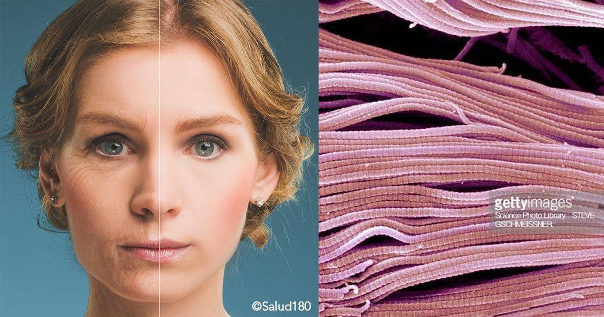cover 30.jpg?resize=648,365 - Si quieres lucir más joven, estos son los 4 alimentos que producen colágeno en el cuerpo