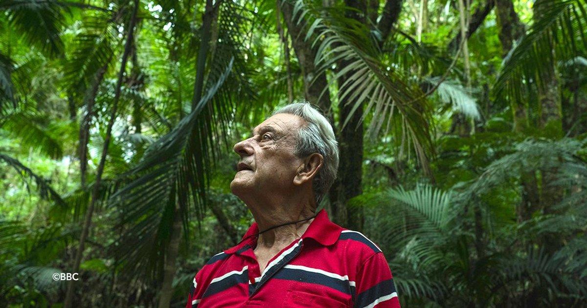 cover22bosq.jpg?resize=412,232 - Todos lo trataban de loco por comprar un terreno erosionado, planto 50 mil árboles y ahora vive en su propia selva
