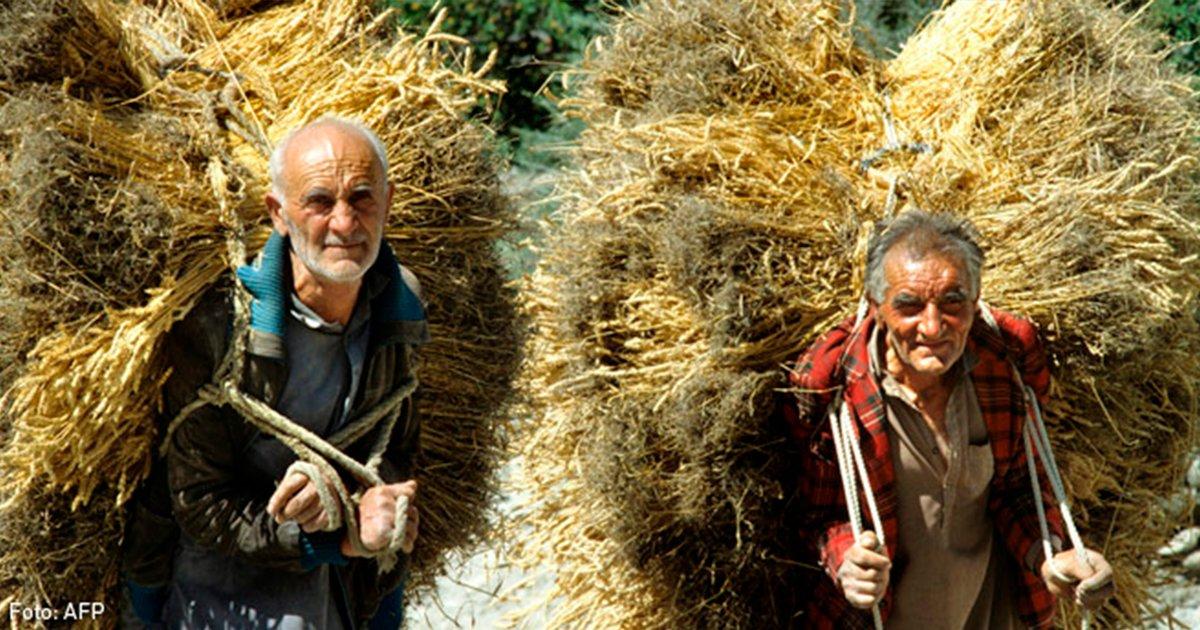 cover22im.jpg?resize=1200,630 - Este es el estilo de vida de la gente de Hunza por el que llegan a vivir 120 años, conoce sus secretos