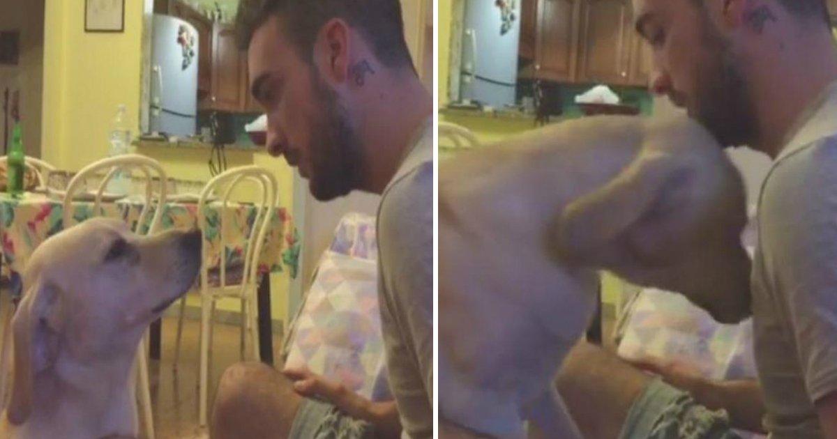 cute apology.jpg?resize=412,232 - Un homme gronde son chien pour une bêtise - il vient avec les excuses les plus adorables