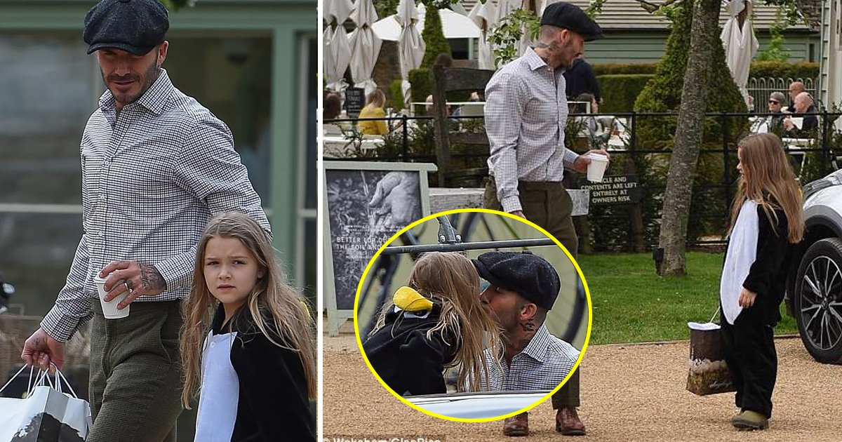 david.jpg?resize=300,169 - Harper Beckham Looks Adorable in a Penguin Costume as She Shares a Sweet Kiss With Father David During Farm Shop