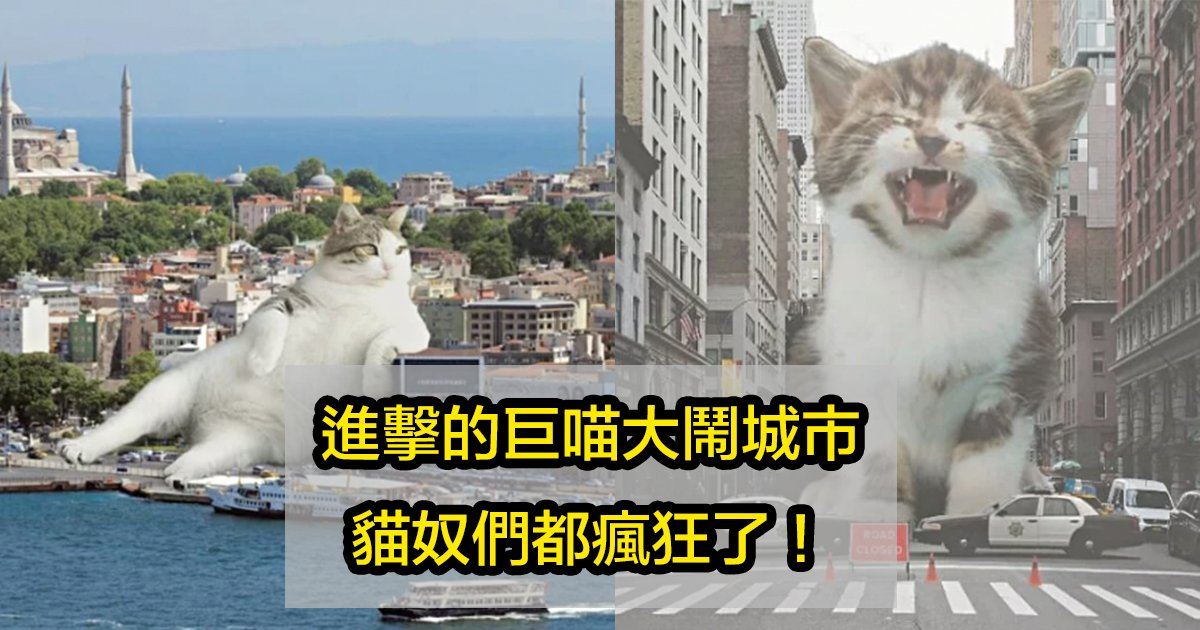 e5b7a8e8b293.jpg?resize=1200,630 - 地球人注意!傲嬌喵星人變身「貓吉拉」癱瘓交通、攻佔各個城市!