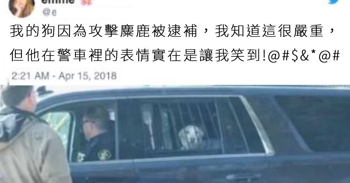 e69caae591bde5908d 1 19.png?resize=648,365 - 狗狗攻擊鹿被捕在警車上一臉茫然:「阿你是要不要保我出來?」笑壞主人