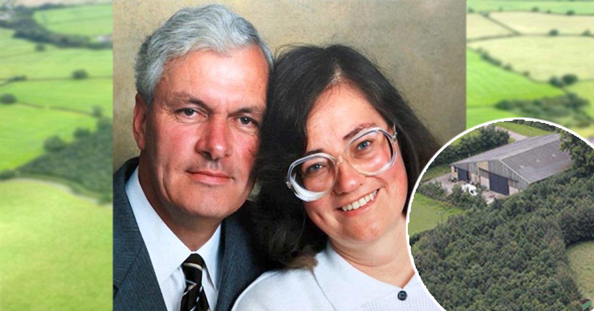 eba788eca780eba789 ec8db8eb84ac.jpg?resize=636,358 - Un veuf plante 6 000 arbres pour honorer sa femme - 17 ans plus tard, son secret est découvert dans la forêt