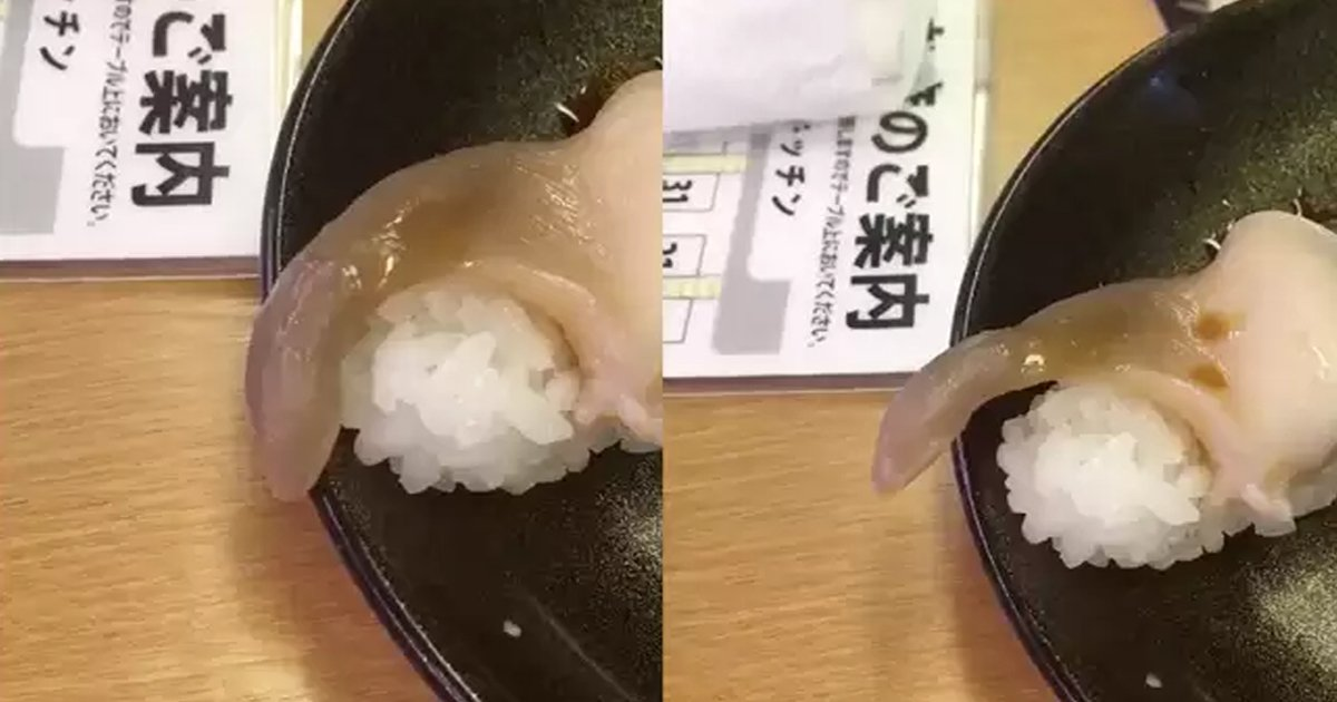 eca795eab880.jpg?resize=412,275 - Scary Moment Sushi Walked Away From Customer's Dish