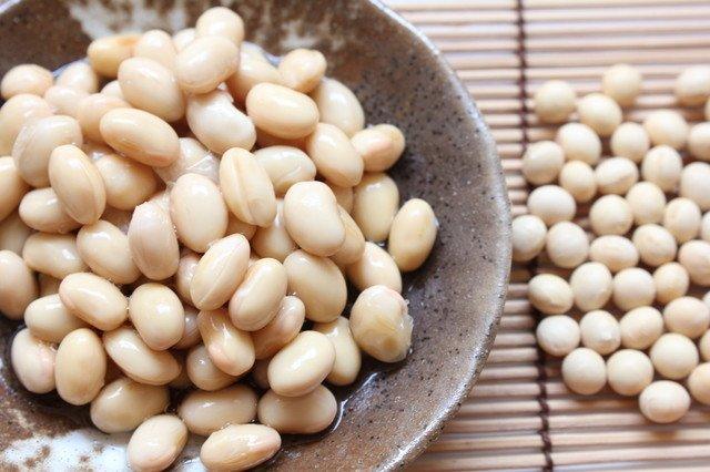 「長期保存された大豆」の画像検索結果