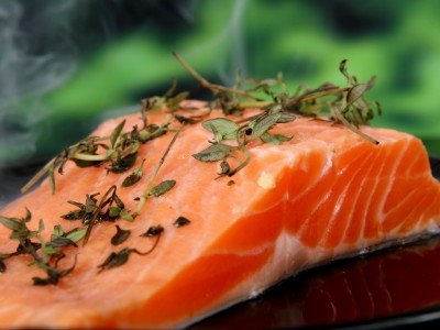 「養殖の鮭」の画像検索結果