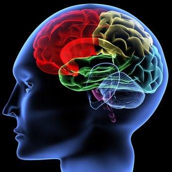 人間の意識에 대한 이미지 검색결과