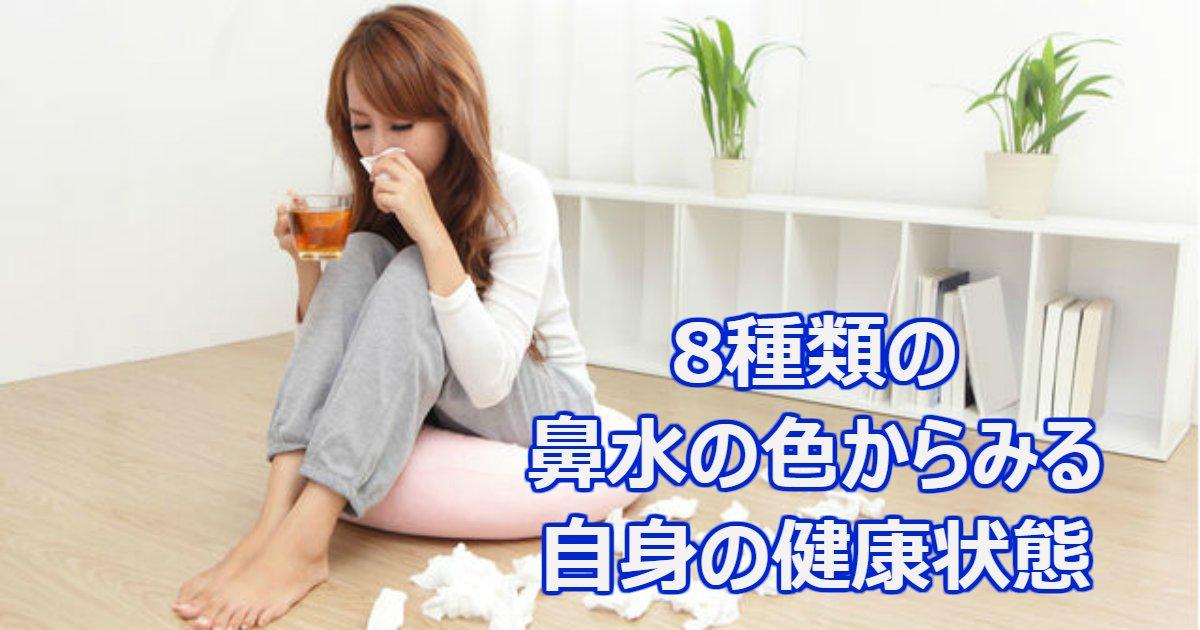kenkou.png?resize=1200,630 - 8種類の鼻水の色から見る自身の健康状態