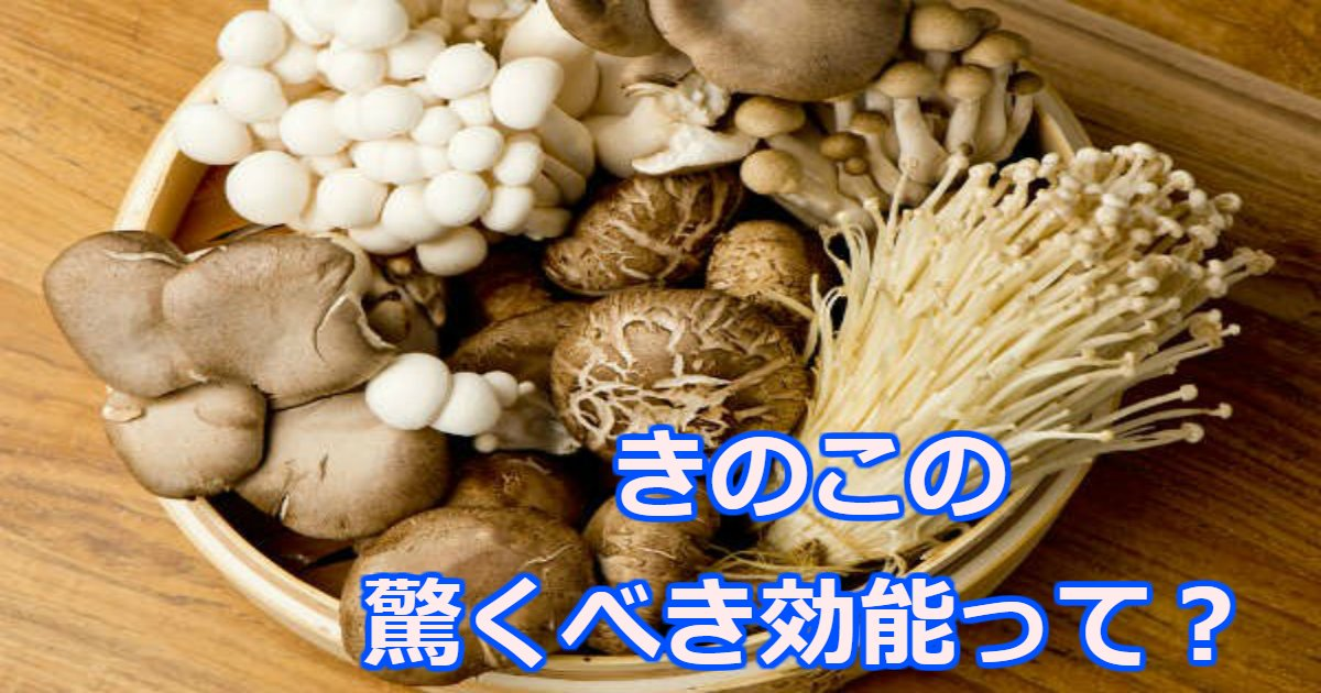 kinoko.png?resize=1200,630 - あなたに合う「きのこの種類」は?実はダイエットや肌に効果的なきのこ