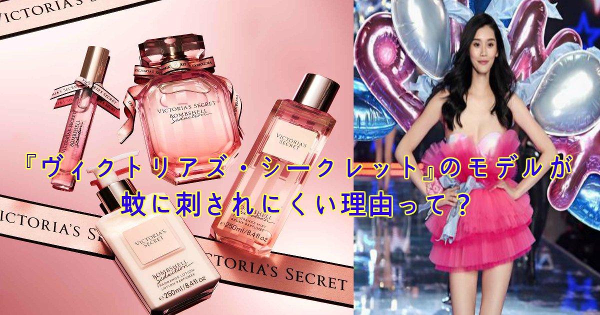 perfume.png?resize=412,232 - 「ヴィクトリアズ・シークレット」のモデルが蚊に刺されにくい理由って?