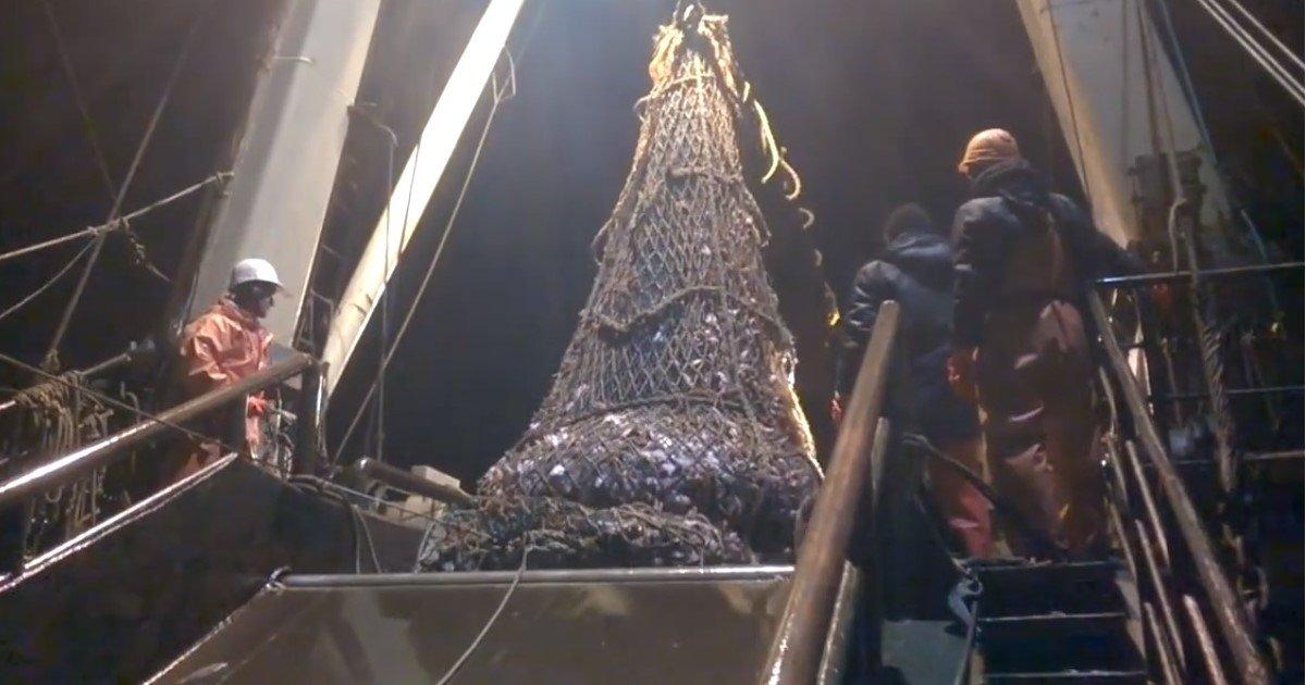 pic copy 6.jpg?resize=412,232 - Fishermen Accidentally Caught A 'Giant Predator' Inside Their Net