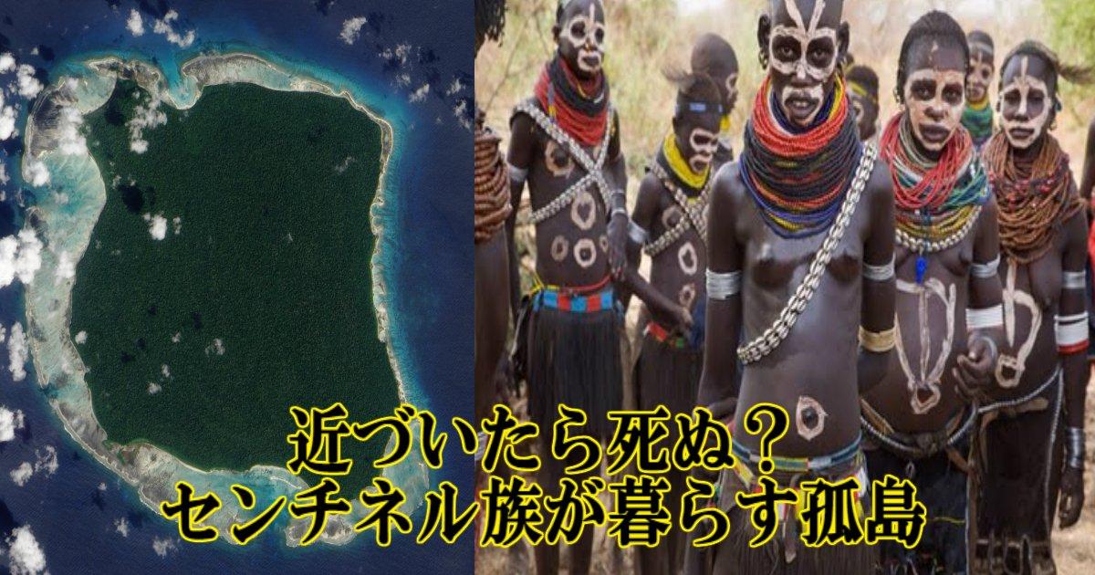 q 5.jpg?resize=1200,630 - 【伝説の孤島】近づいたら死ぬ?未知の部族「センチネル族」が暮らす島とは?