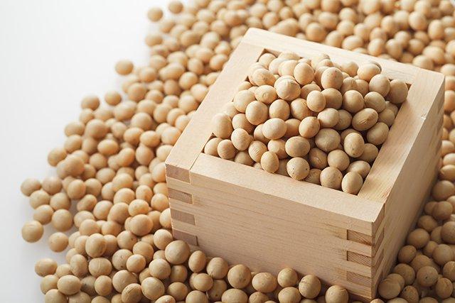 「大豆」の画像検索結果