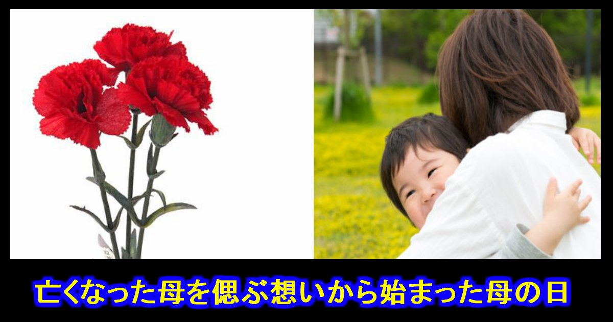 unnamed file 11.jpg?resize=1200,630 - 母の日『亡くなった母を偲ぶ想いから始まった習慣』だと知っていましたか?