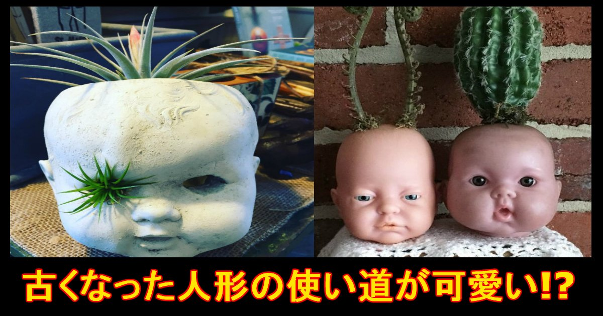 unnamed file 8.jpg?resize=1200,630 - 恐怖!?エコ!?古い人形を使った「植木鉢」が怖い!