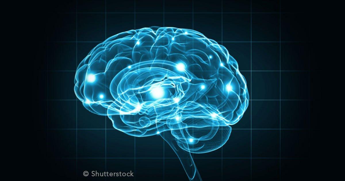untitled 1 25.jpg?resize=1200,630 - Podríamos prevenir la demencia con estos consejos pues la podemos contraer a cualquier edad