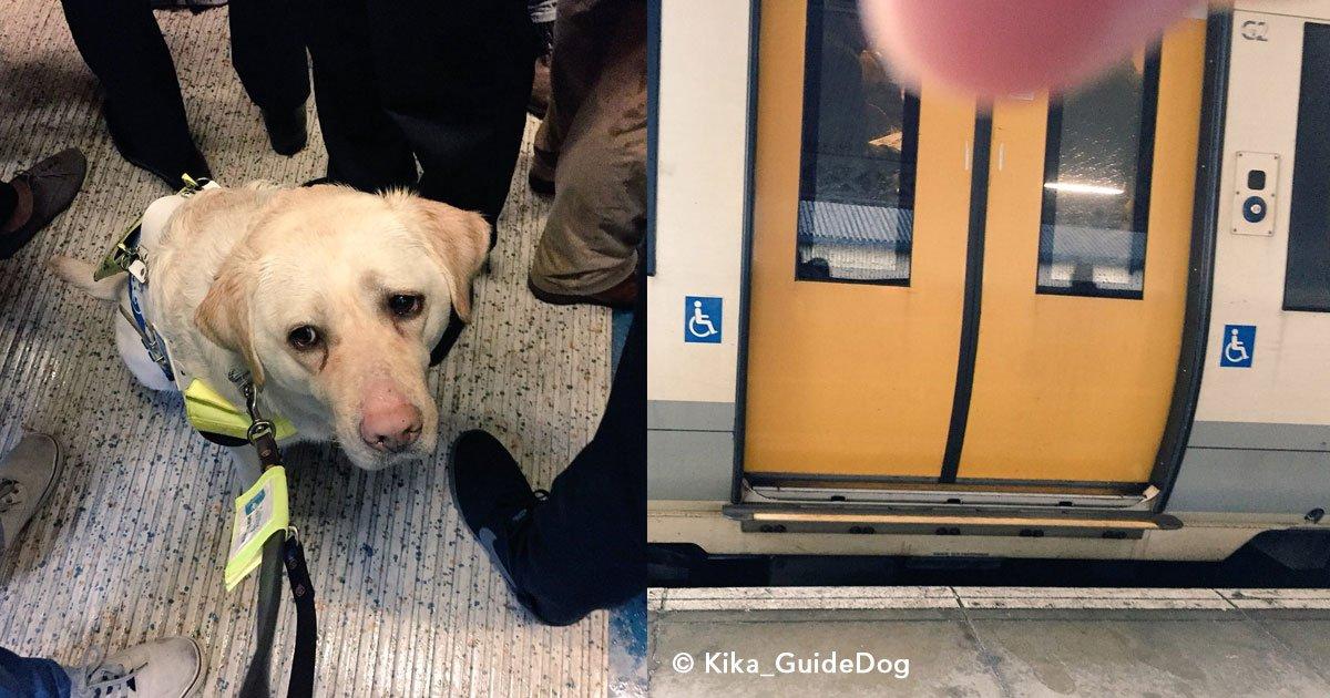 untitled 1 30.jpg?resize=412,232 - Cão-guia fica muito triste ao ver que ninguém no trem dá lugar ao seu dono cego sentar