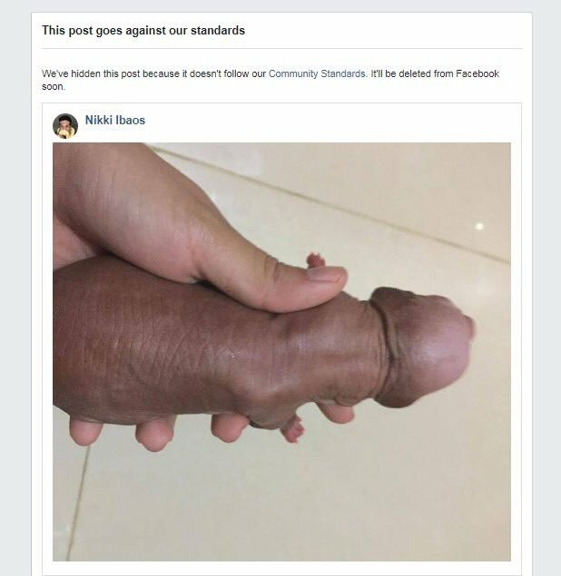 Image result for nikki lbaos