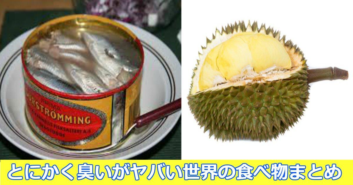 yabai.png?resize=1200,630 - 世界の臭いがヤバい食べ物まとめ!日本の食べ物もちゃっかりランクインしている件