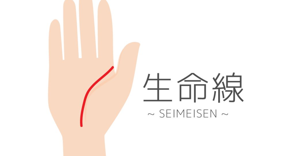 Image result for 手相 生命線