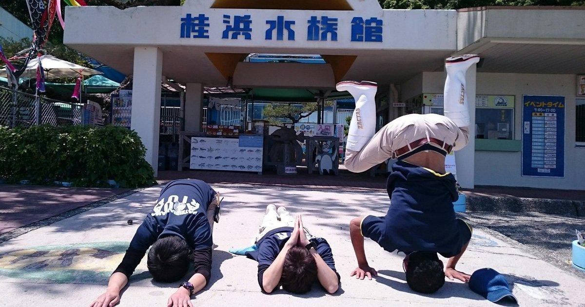 180622 311.jpg?resize=412,232 - 「快做不下去了...」日本水族館頻臨倒閉,員工為攬客都瘋掉啦