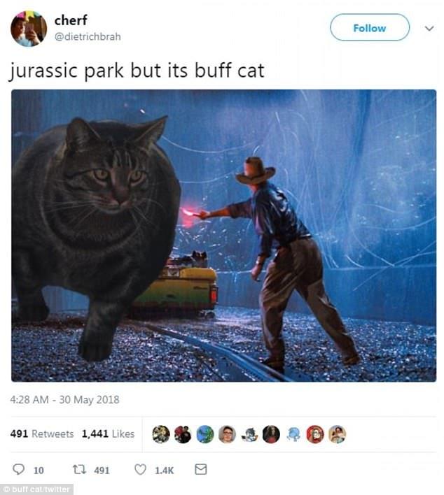 Une autre scène montre une scène de Jurassic Park mais Buff Cat est la créature géante contre laquelle les humains se battent