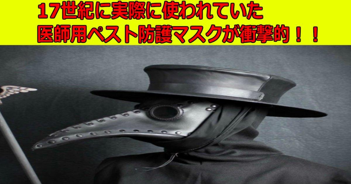 a 25.jpg?resize=1200,630 - 17世紀に実際に使われていた医師用ペスト防護マスクが衝撃的!!