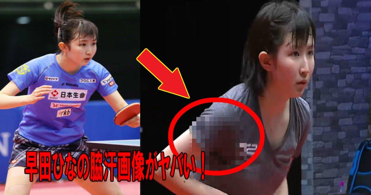 aa 3.jpg?resize=1200,630 - 卓球界で注目されている若手選手、早田ひなの脇汗画像がヤバい!