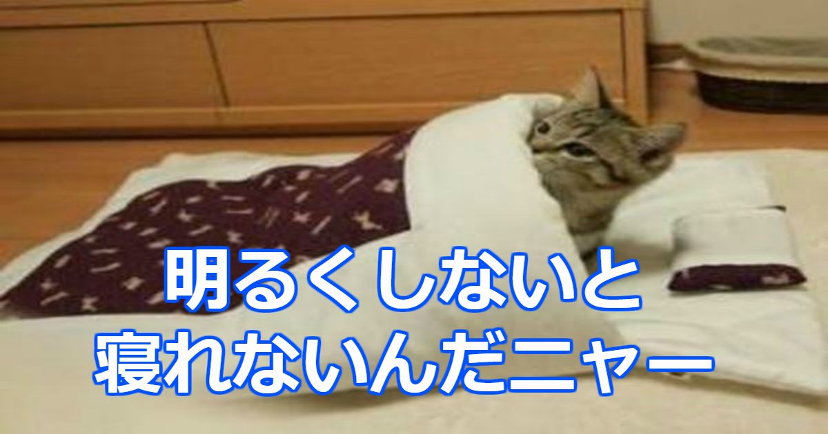 akari.png?resize=300,169 - 今日も電気をつけたまま寝るの?夜に明るい室内で寝たら健康に良くない理由とは?