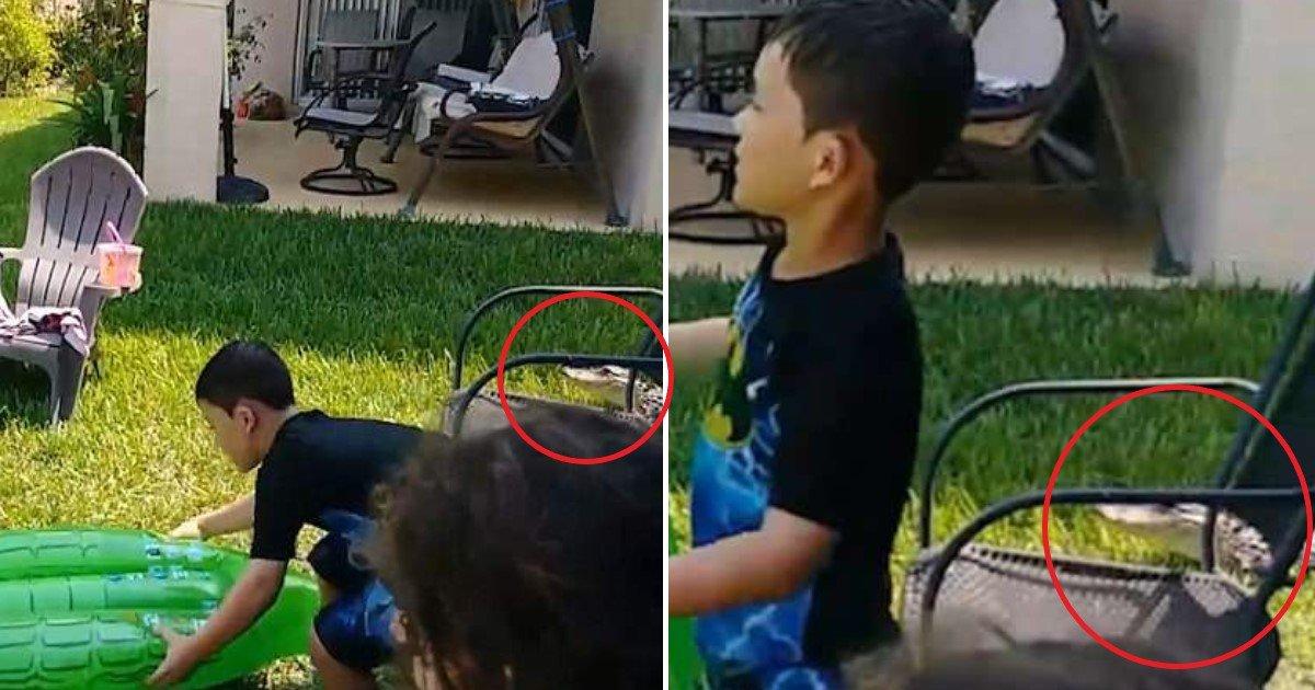 allig.jpg?resize=412,232 - Ce garçon joue avec une bouée Alligator, inconscient qu'il y en a un vrai juste à côté !