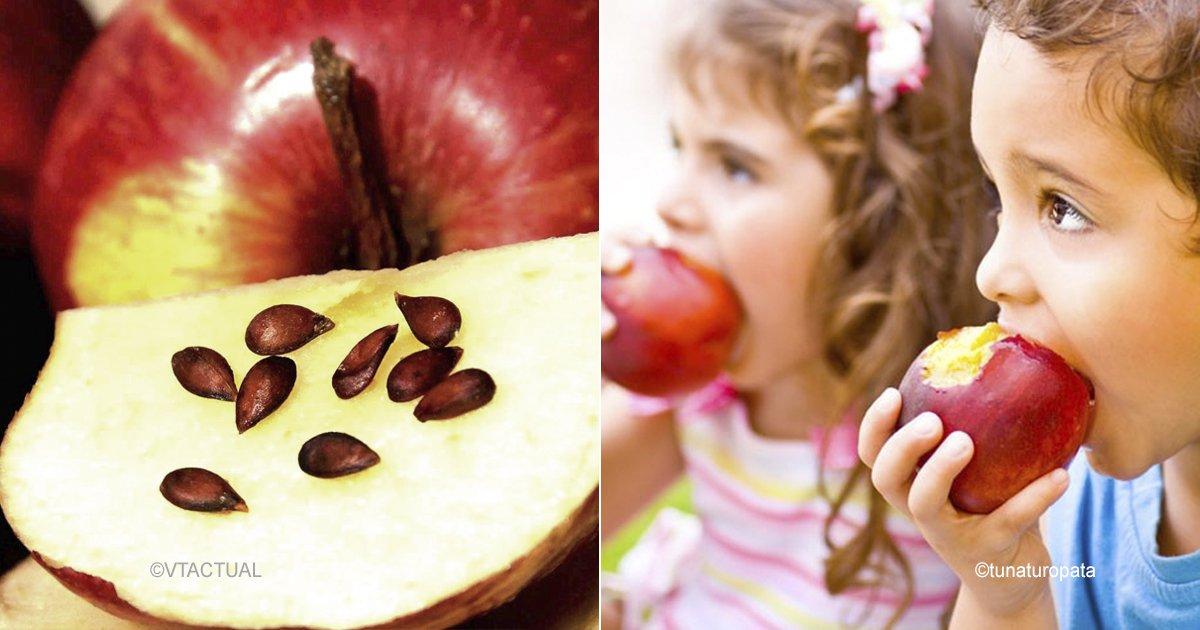 appl 1.jpg?resize=300,169 - Las semillas de estas frutas podrían afectar tu salud, e incluso causarte la muerte
