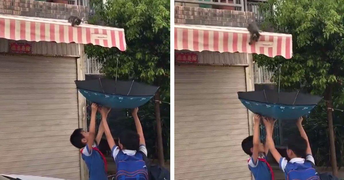capa10r.png?resize=1200,630 - Garotinhos salvam filhote de gato que estava preso no telhado com uma técnica engenhosa