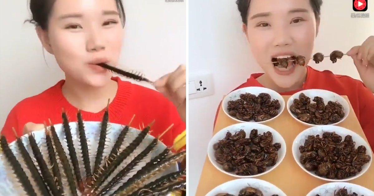 capaa7.png?resize=1200,630 - Exótico? Vídeo mostra chinesa degustando insetos como se fossem batata frita