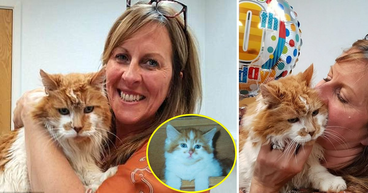 """cat 5.jpg?resize=1200,630 - Rubble Le """"chat le plus vieux du monde"""" célèbre son 30ème anniversaire"""